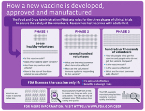 Infographic with phased timeline of vaccine creation